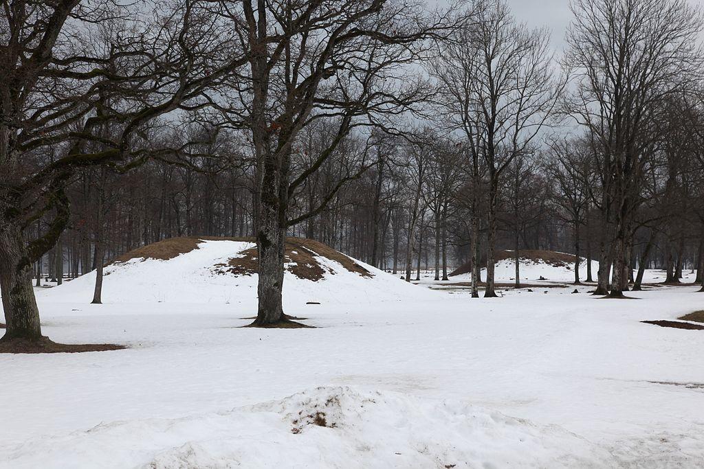 Los montículos funerarios del cementerio de Borre.
